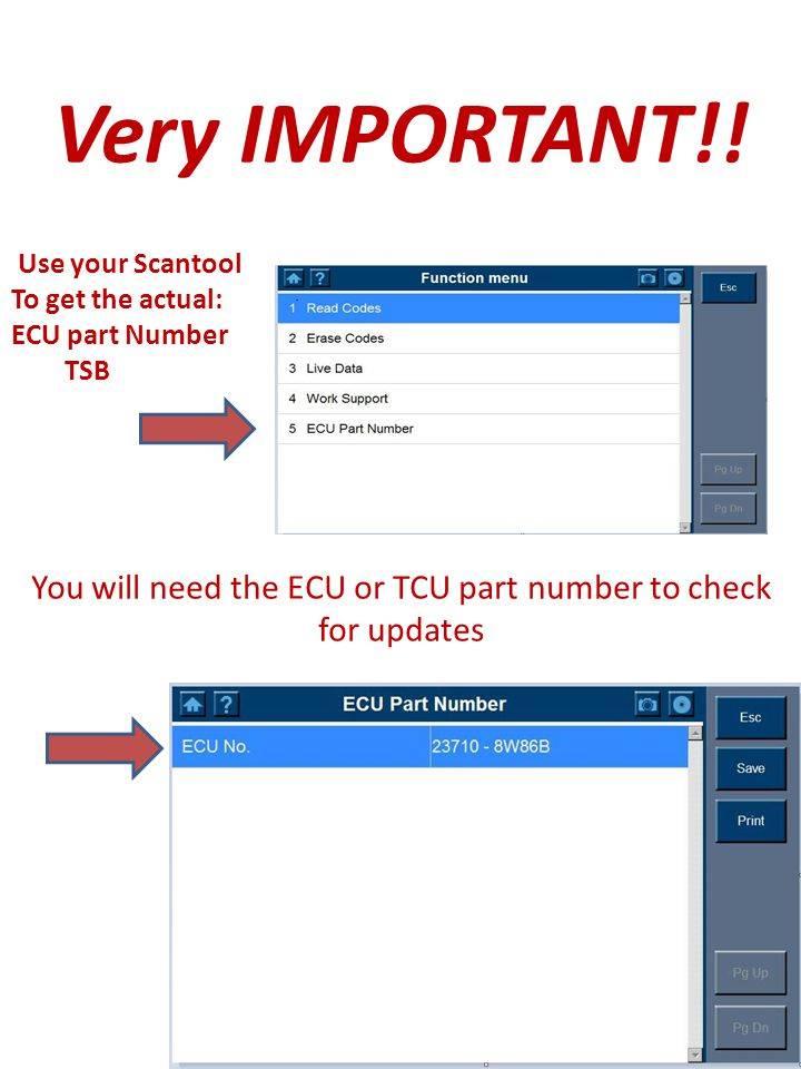 You will need the ECU or TCU part number to check for updates