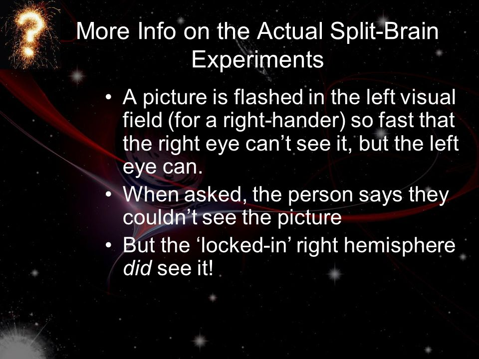 More Info on the Actual Split-Brain Experiments