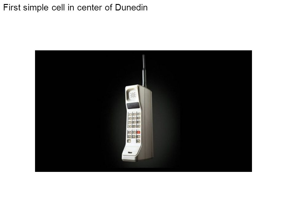 First simple cell in center of Dunedin