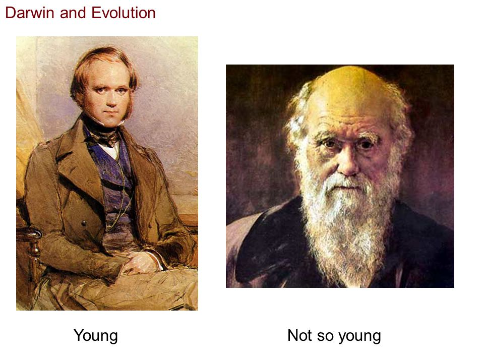 Darwin and Evolution Young Not so young