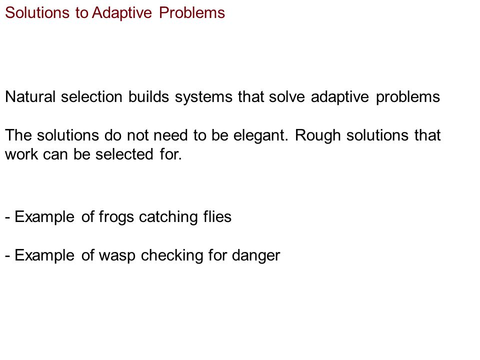Solutions to Adaptive Problems