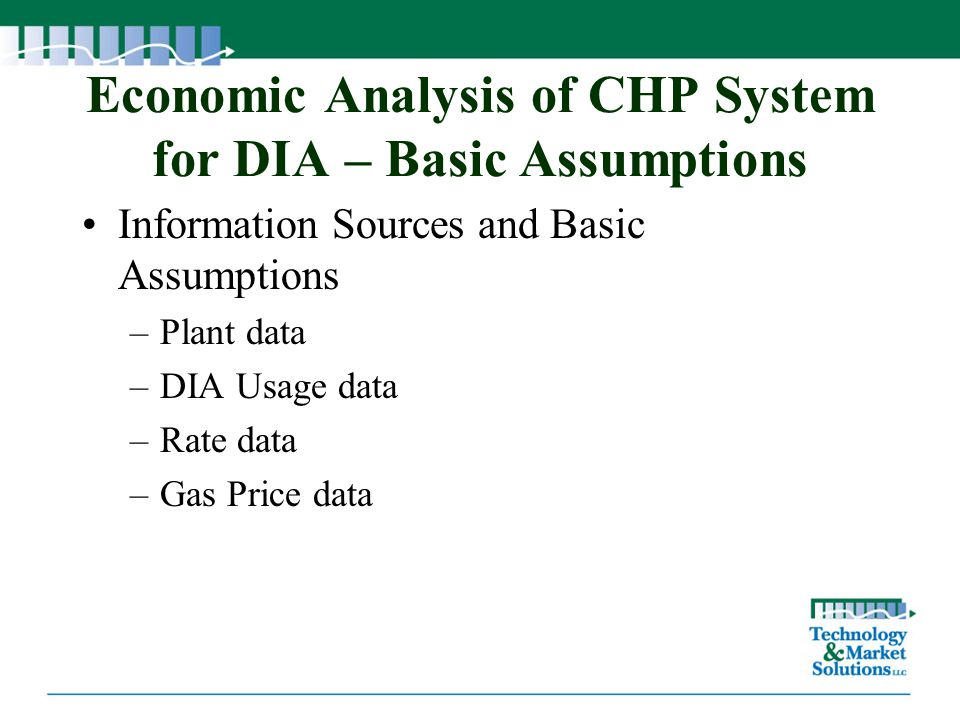 Economic Analysis of CHP System for DIA – Basic Assumptions