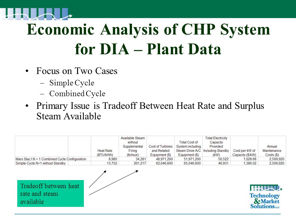 Economic Analysis of CHP System for DIA – Plant Data