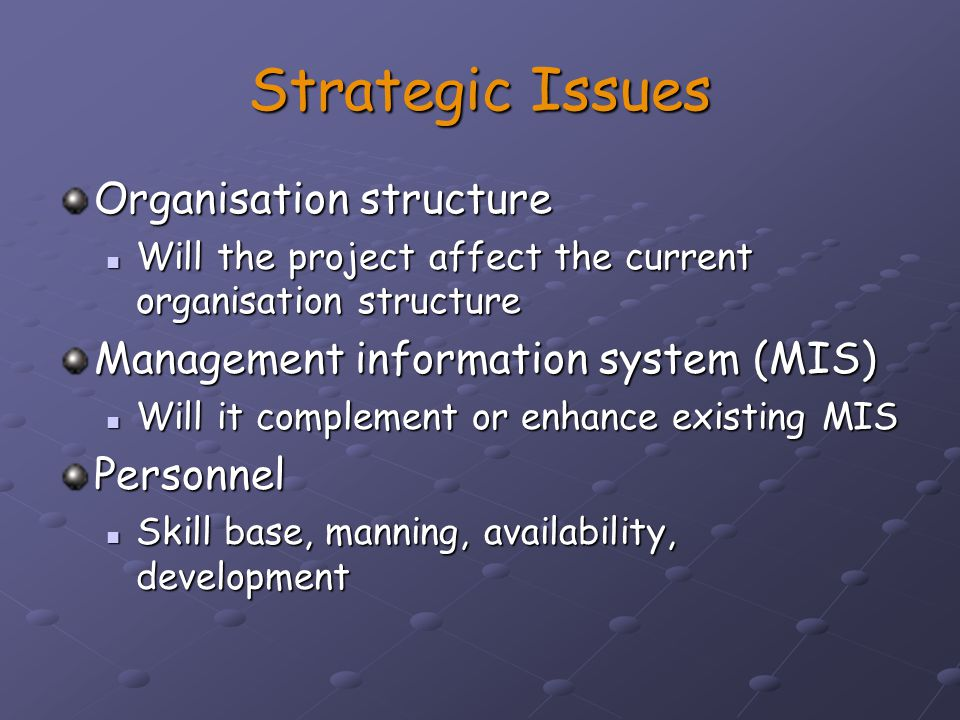Strategic Issues Organisation structure