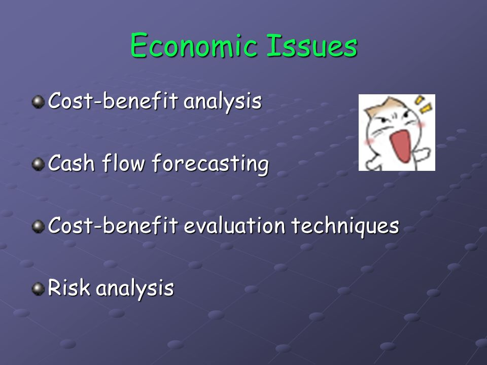 Economic Issues Cost-benefit analysis Cash flow forecasting