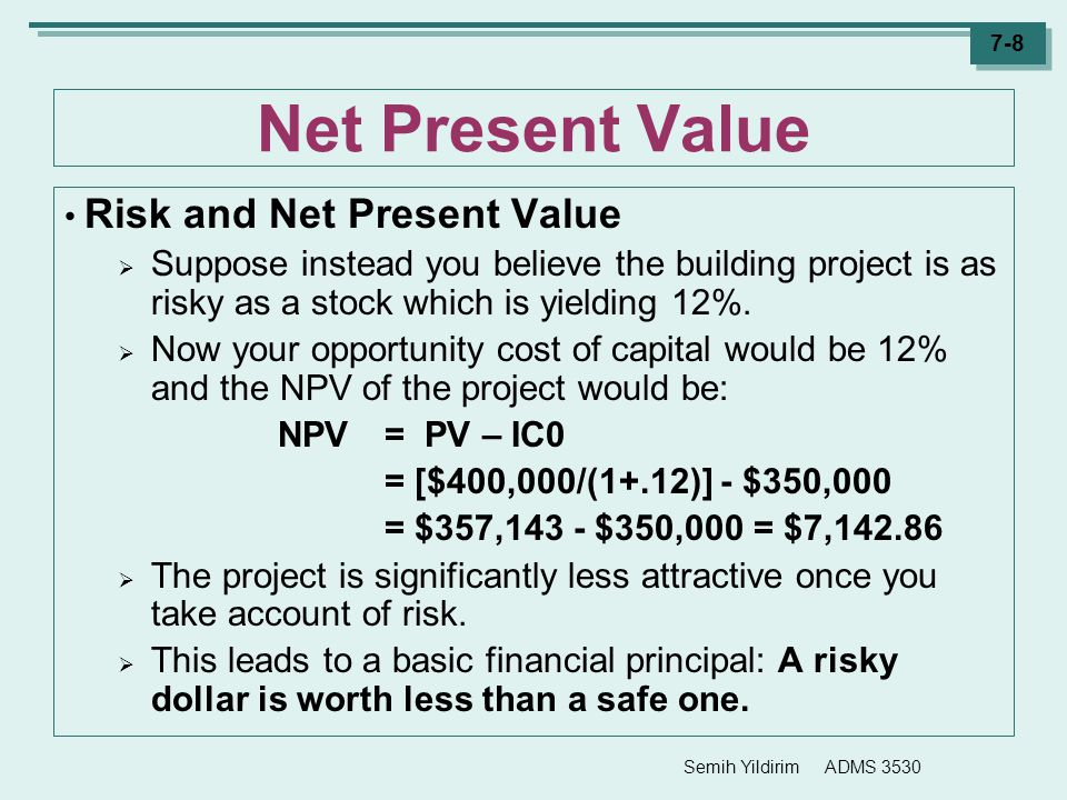 Net Present Value Risk and Net Present Value