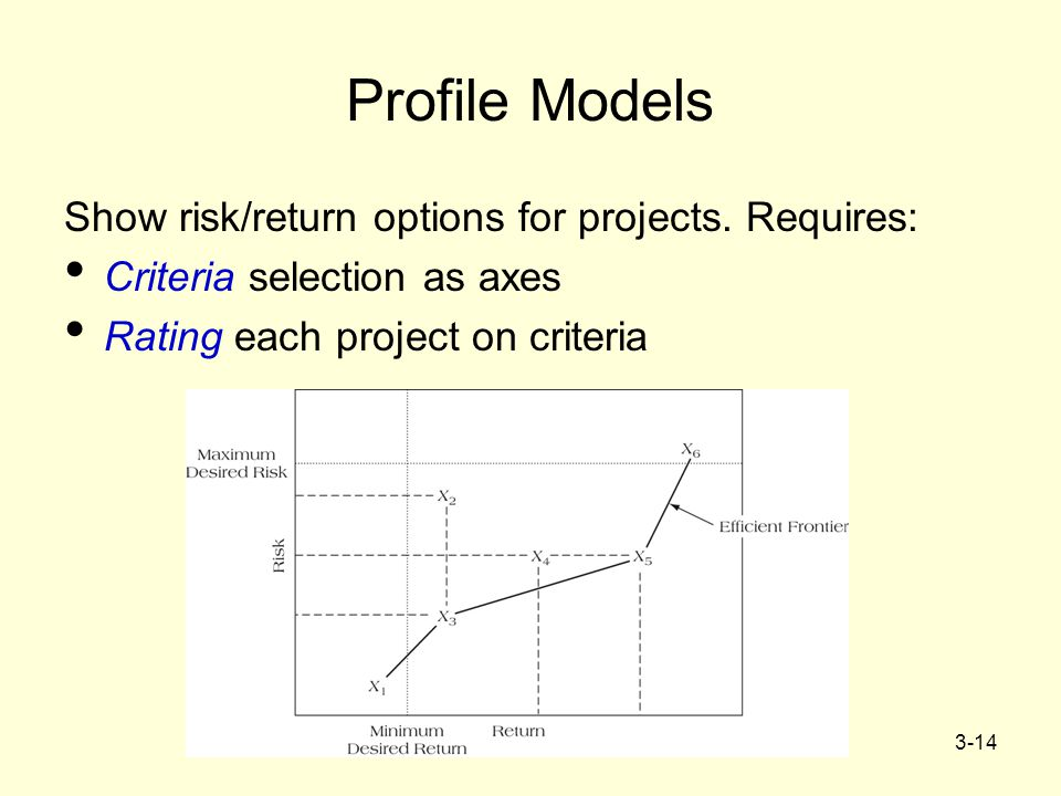 Profile Models Show risk/return options for projects. Requires: