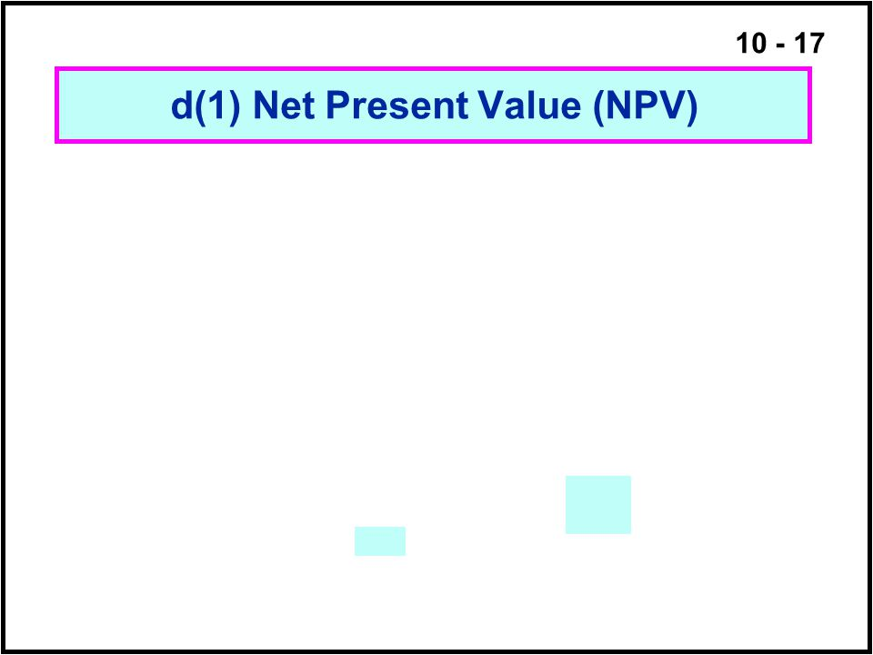 d(1) Net Present Value (NPV)