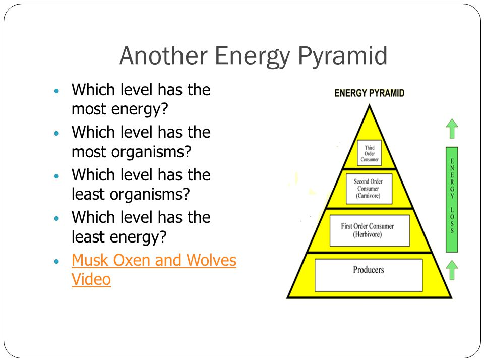 Another Energy Pyramid