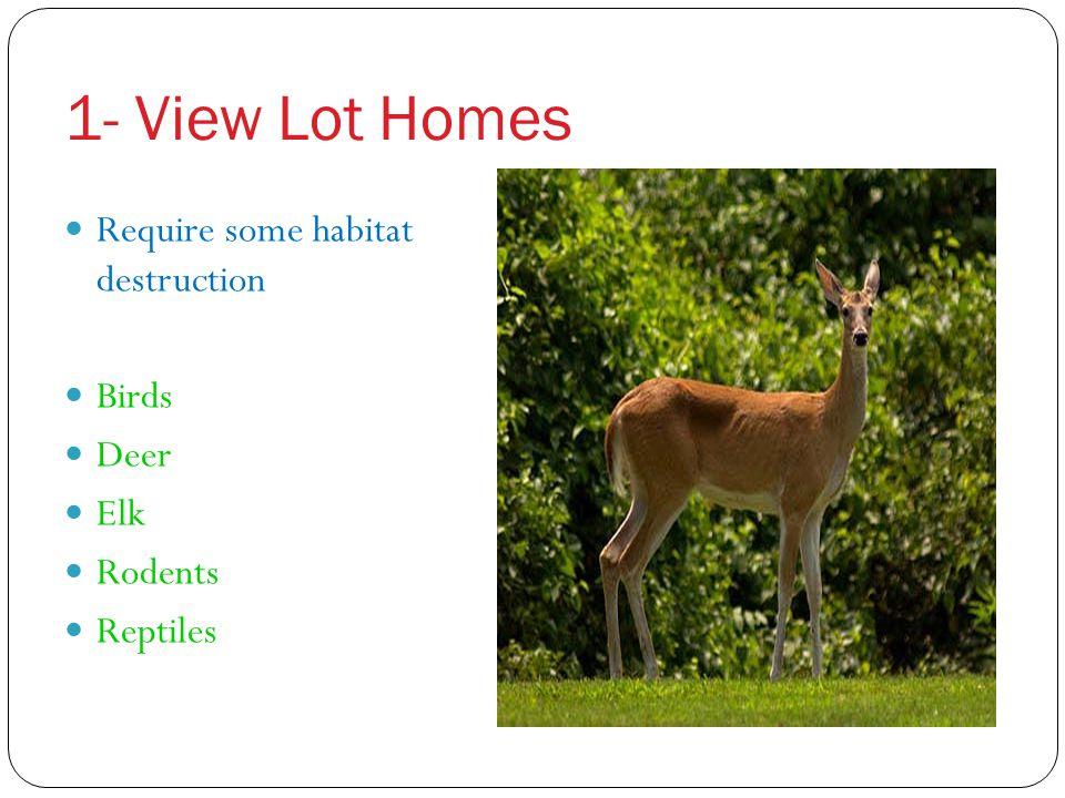 1- View Lot Homes Require some habitat destruction Birds Deer Elk