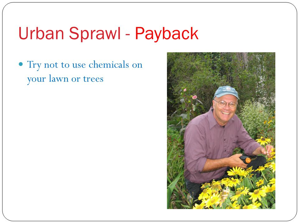 Urban Sprawl - Payback Try not to use chemicals on your lawn or trees