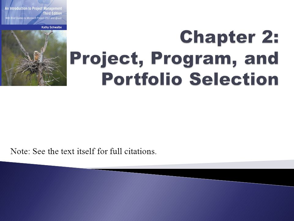 Chapter 2: Project, Program, and Portfolio Selection