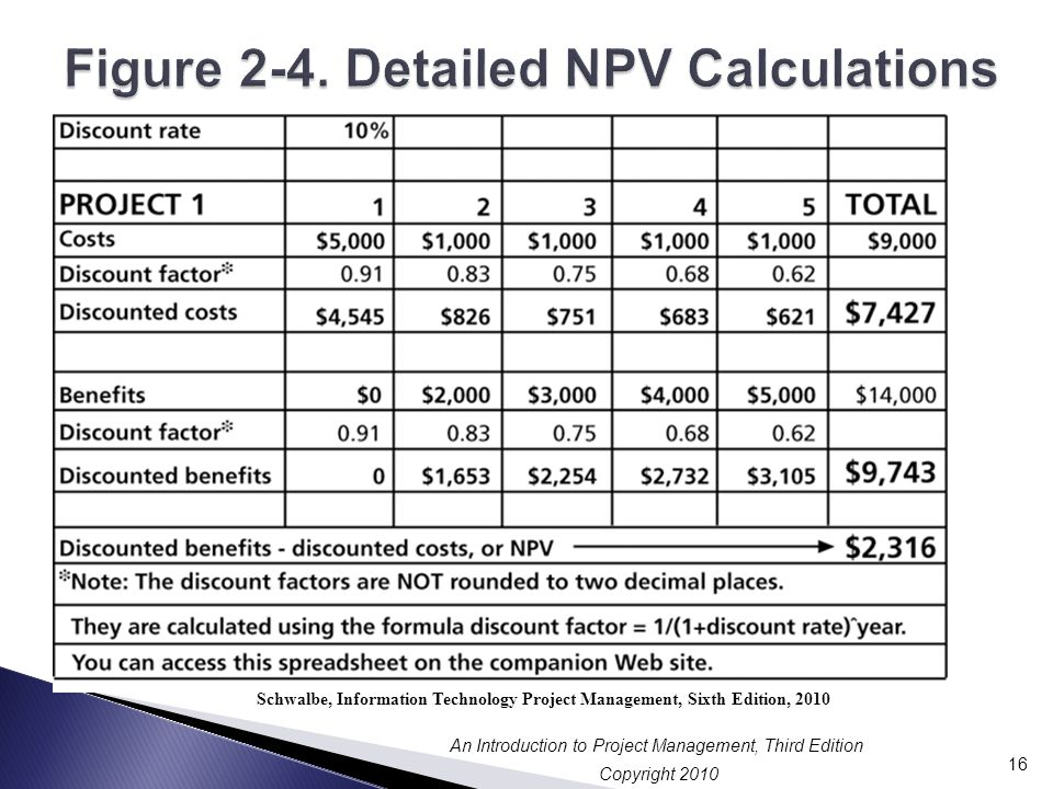 Figure 2-4. Detailed NPV Calculations