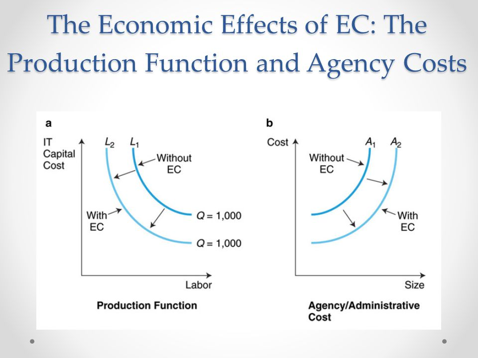 The Economic Effects of EC: The Production Function and Agency Costs