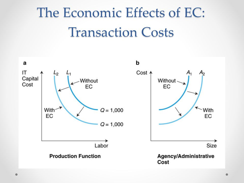 The Economic Effects of EC: Transaction Costs
