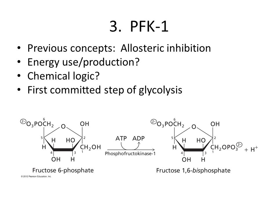 3. PFK-1 Previous concepts: Allosteric inhibition