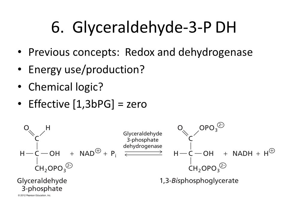 6. Glyceraldehyde-3-P DH Previous concepts: Redox and dehydrogenase