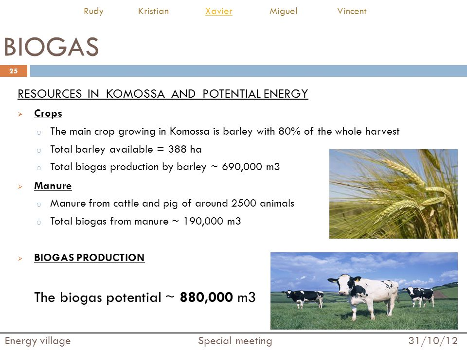 BIOGAS RESOURCES IN KOMOSSA AND POTENTIAL ENERGY Crops