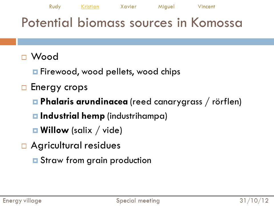 Potential biomass sources in Komossa