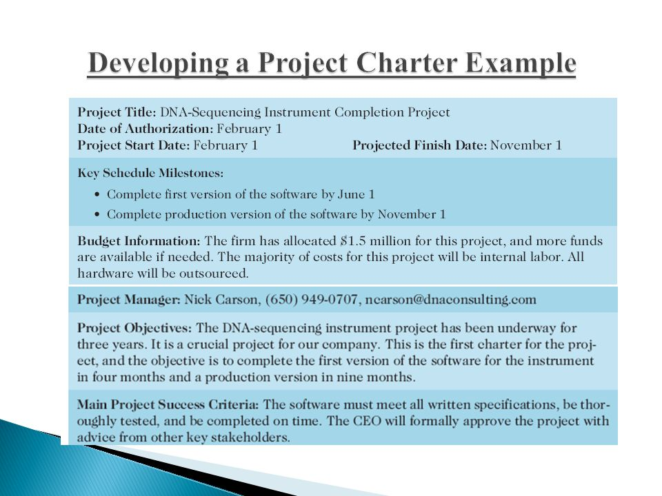 Developing a Project Charter Example