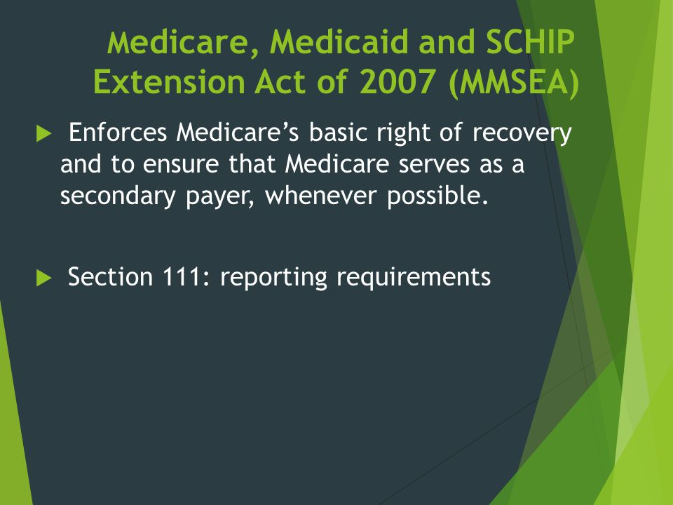Medicare, Medicaid and SCHIP Extension Act of 2007 (MMSEA)
