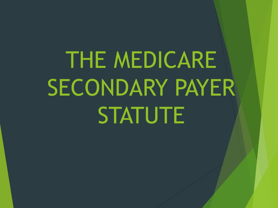 THE MEDICARE SECONDARY PAYER STATUTE