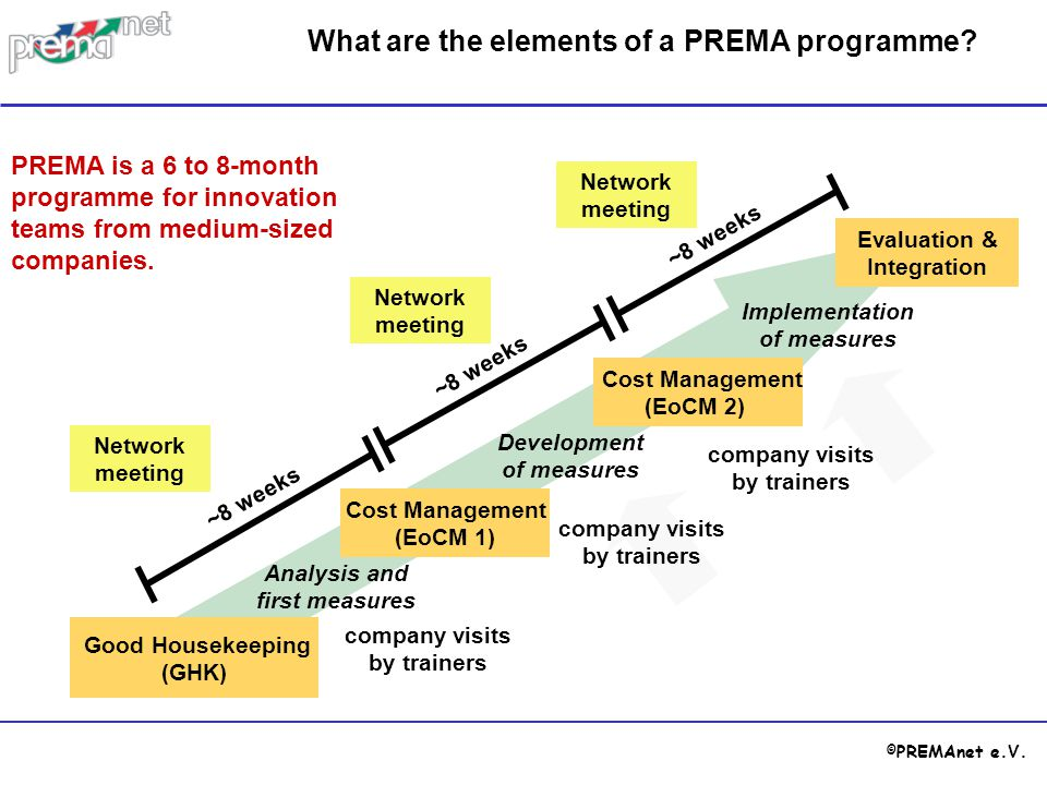 What are the elements of a PREMA programme