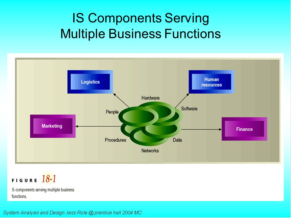 IS Components Serving Multiple Business Functions