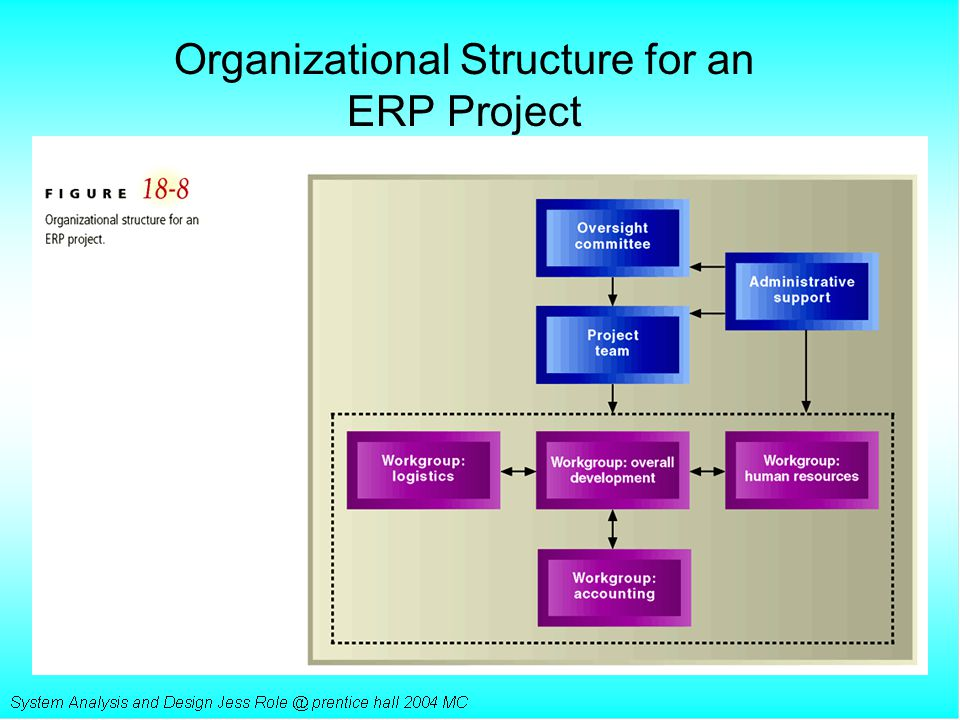 Organizational Structure for an ERP Project