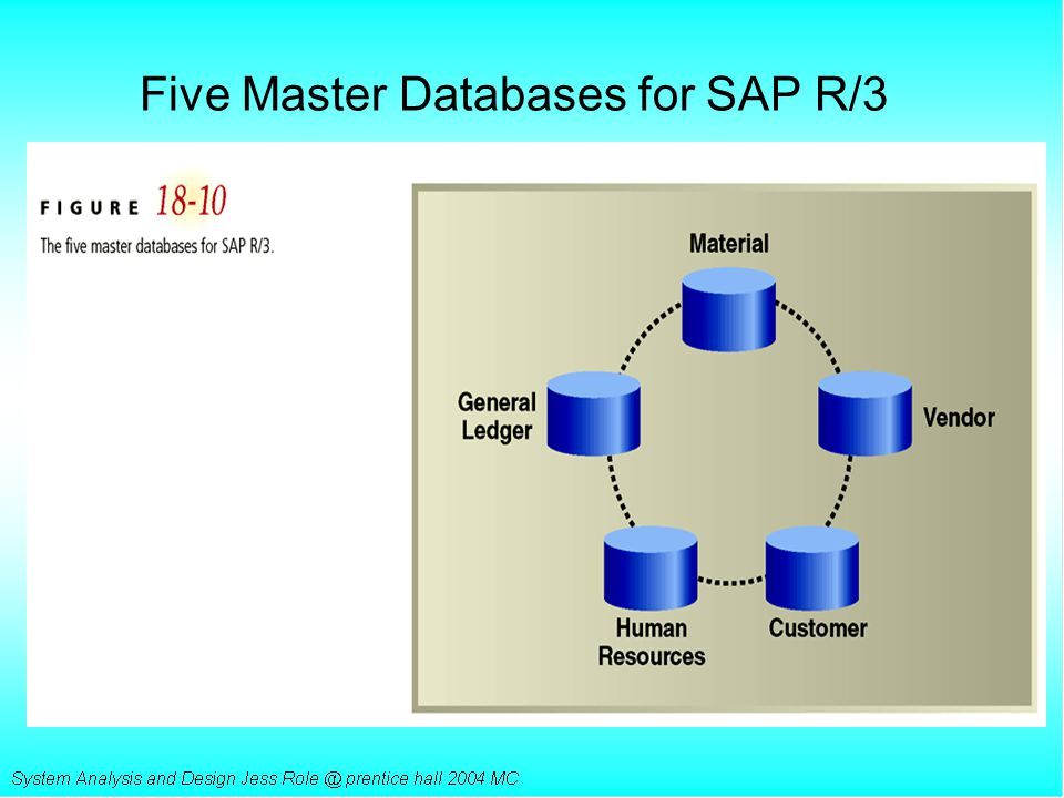 Five Master Databases for SAP R/3