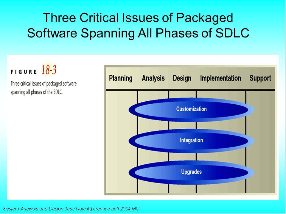 Three Critical Issues of Packaged Software Spanning All Phases of SDLC