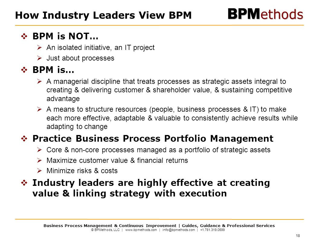 How Industry Leaders View BPM