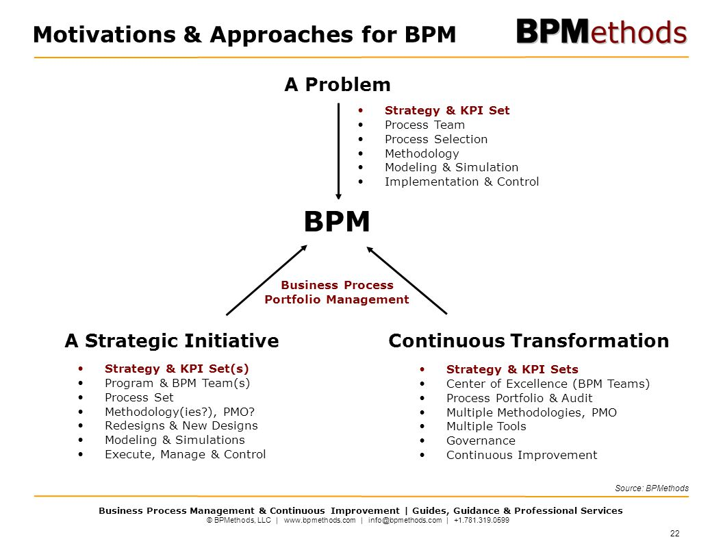 Motivations & Approaches for BPM