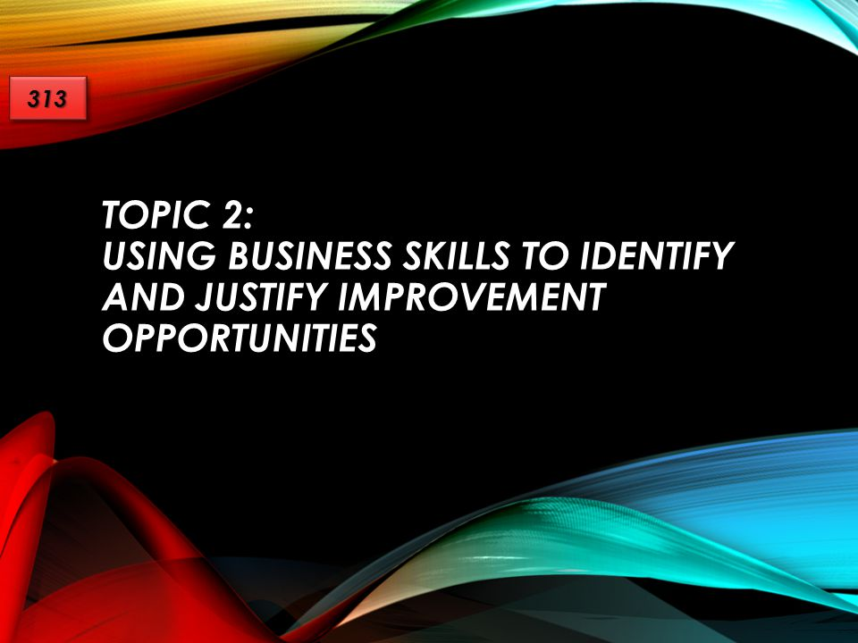313 Topic 2: Using Business Skills to Identify and Justify Improvement Opportunities