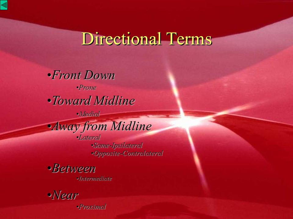 Directional Terms Front Down Toward Midline Away from Midline Between