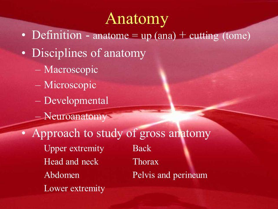 Anatomy Definition - anatome = up (ana) + cutting (tome)