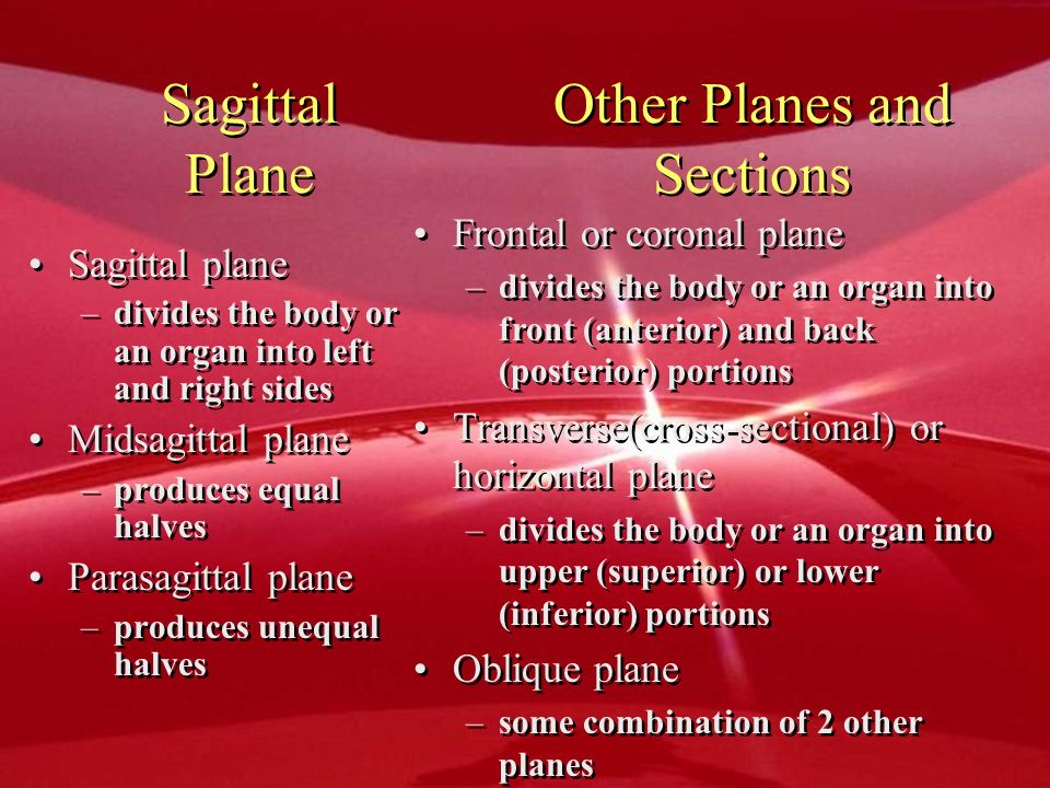 Other Planes and Sections