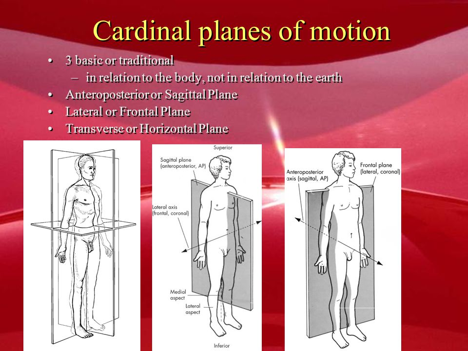 Cardinal planes of motion