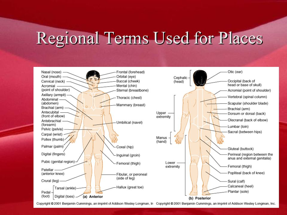 Regional Terms Used for Places