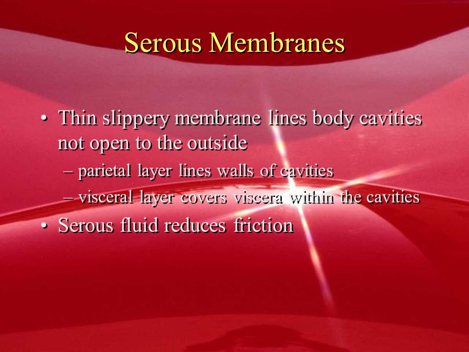 Serous Membranes Thin slippery membrane lines body cavities not open to the outside. parietal layer lines walls of cavities.