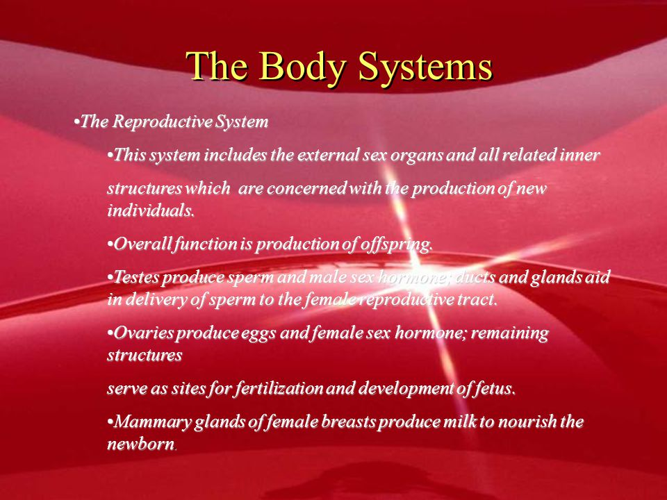 The Body Systems The Reproductive System