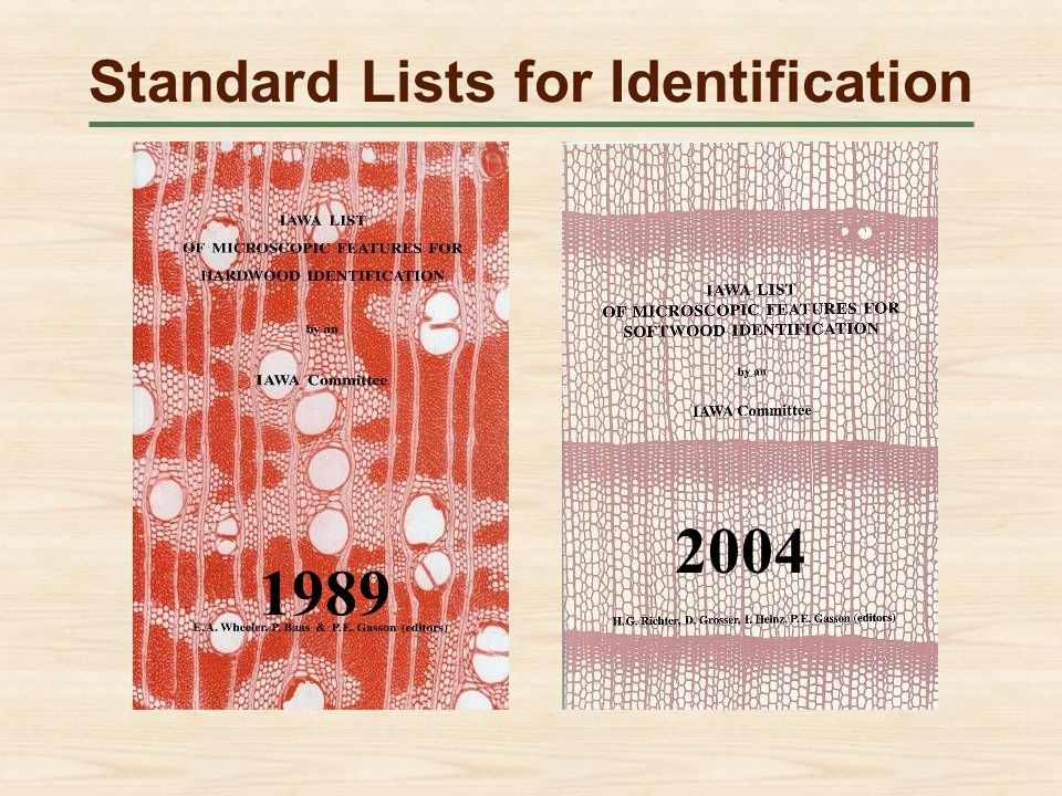 Standard Lists for Identification