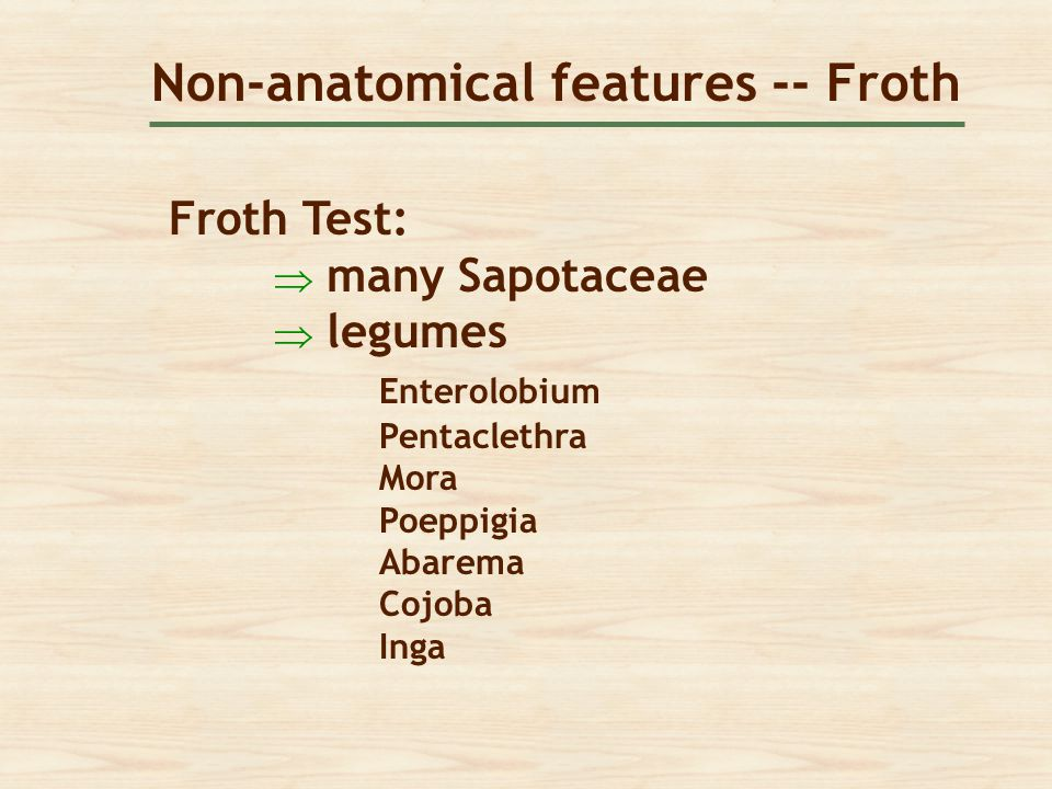 Non-anatomical features -- Froth