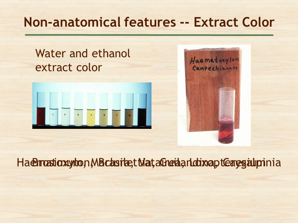 Non-anatomical features -- Extract Color