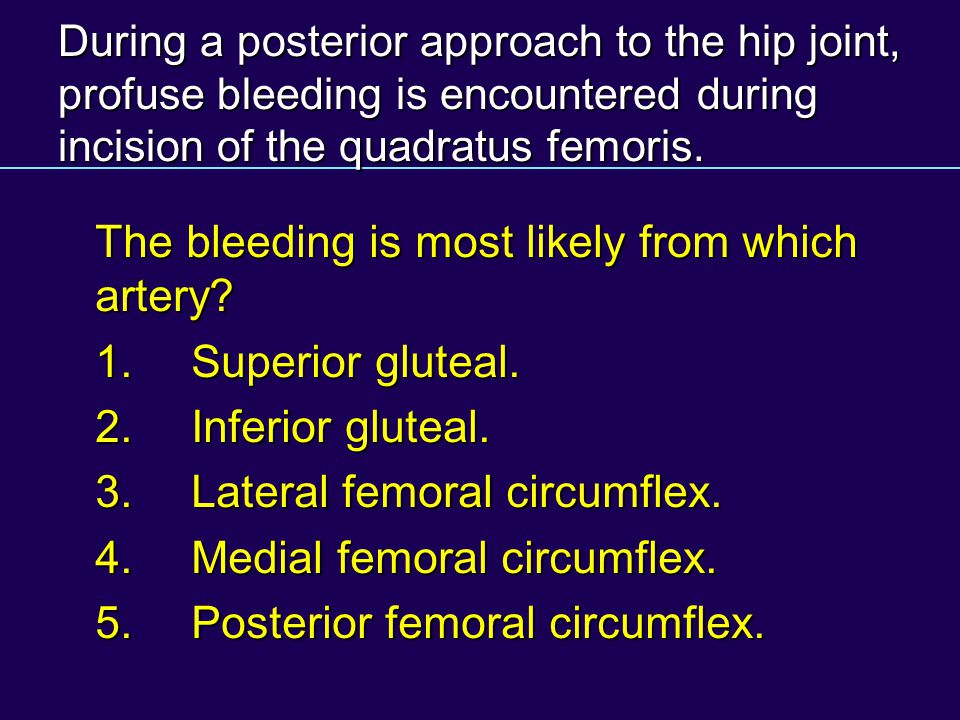 The bleeding is most likely from which artery 1. Superior gluteal.