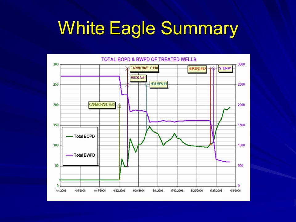 White Eagle Summary