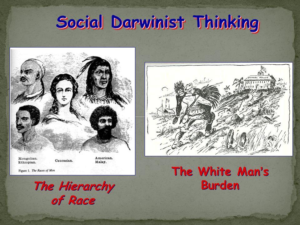 Social Darwinist Thinking