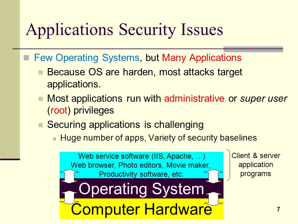 Applications Security Issues