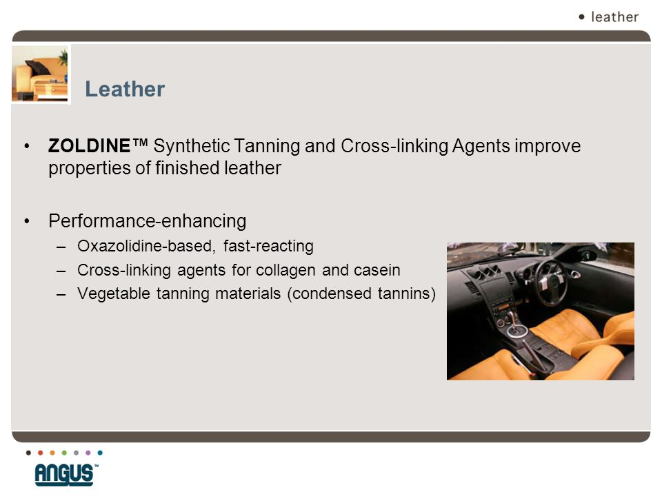 Leather ZOLDINE™ Synthetic Tanning and Cross-linking Agents improve properties of finished leather.