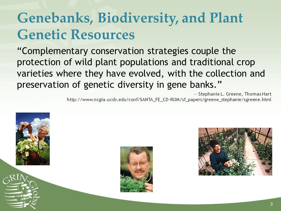 Genebanks, Biodiversity, and Plant Genetic Resources